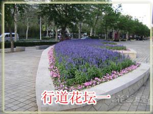行道花坛实例1