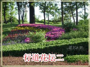 行道花坛实例2