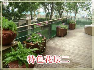 特色花坛实例2