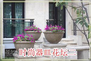 时尚器皿花坛2